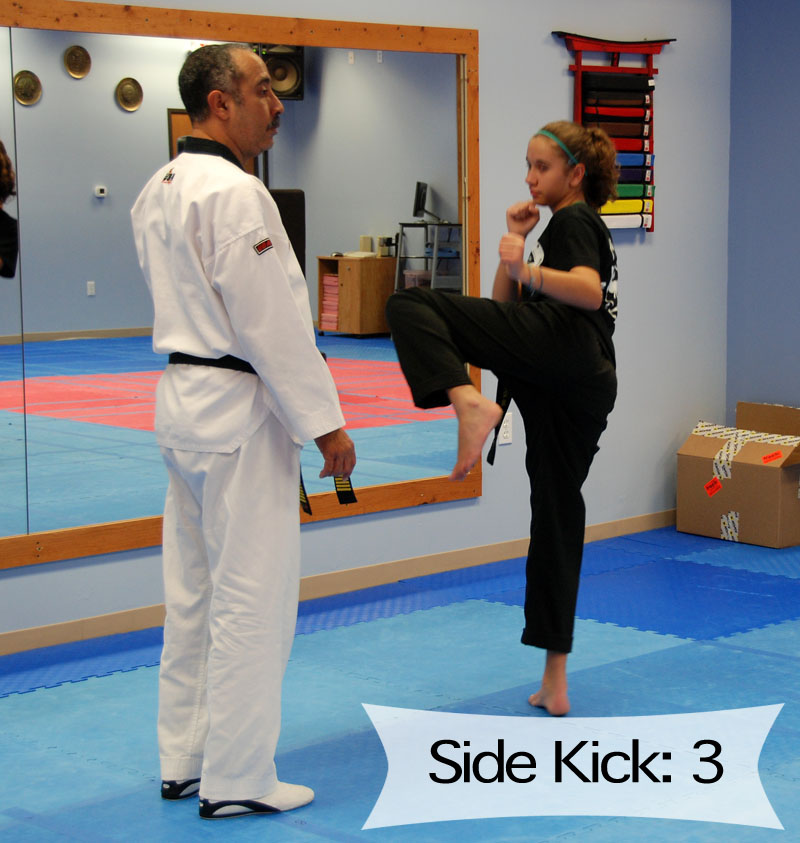 Sidekick Lesson review
